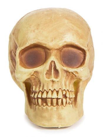 Halloween Antik-Totenschädel
