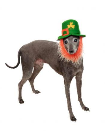 Leprechaun Hut mit Bart für Hunde