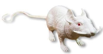 Weiße Kunststoff Ratte