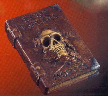 Hexenbuch mit Totenschädel
