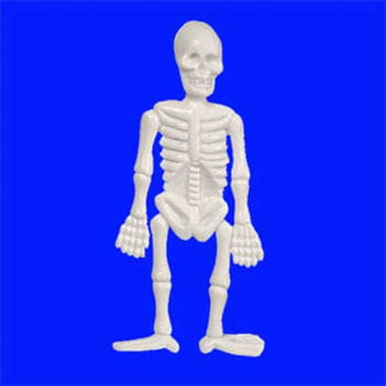White Mini Skeleton 6cm
