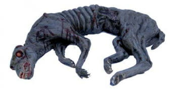 Famished Zombie Dog