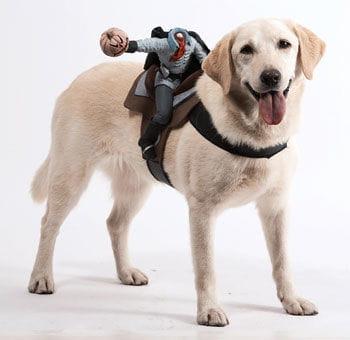Kopfloser Reiter Hundekostüm