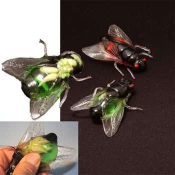 Fliege mit Madenlarve