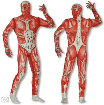 Anatomie / Skinned Ganzkörper Anzug