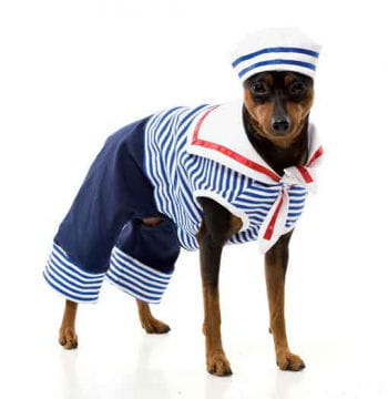 Sailor Dog Costume Size S