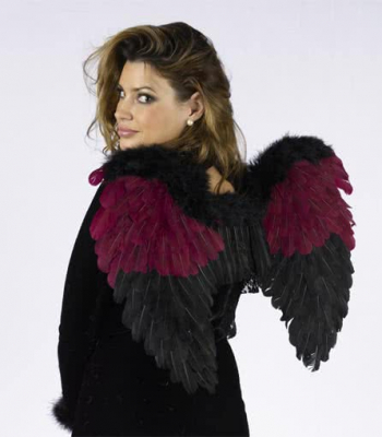 Bordeux wings and black with Feathers and Lace