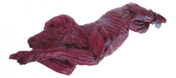 Skinned bloody dog