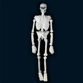 weißes Skelett UV Aktiv