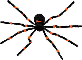 Falling haired orange spider