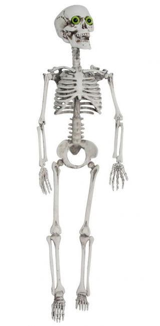 Skeleton with Green Eyes