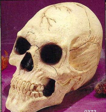 Big Skull DLX Beige