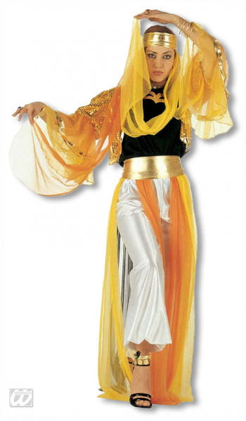 Harem Dancer Costume M