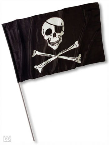 Pirate Flag with Skull Large
