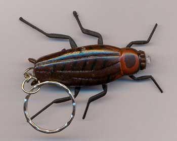 Kakerlaken  Schlüsselanhänger m. Licht