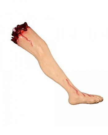 Severed leg with thigh