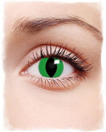 Motivlinsen grüne Anakonda