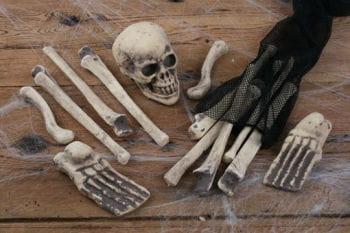 Beutel voll mit Knochen