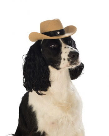 Brown cowboy hat for dog