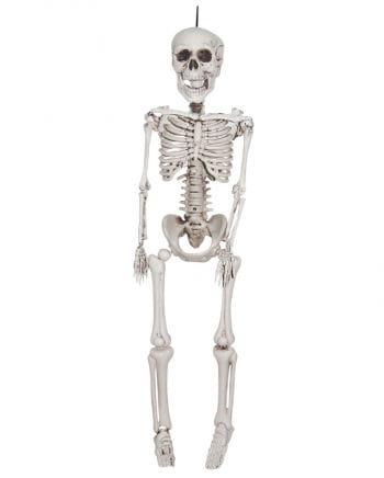 Deko Skelett zum Aufhängen