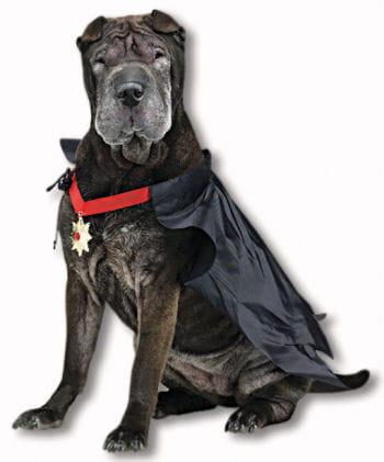 Dracula Hundekostüm