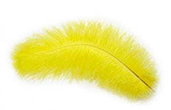 Genuine ostrich feather yellow