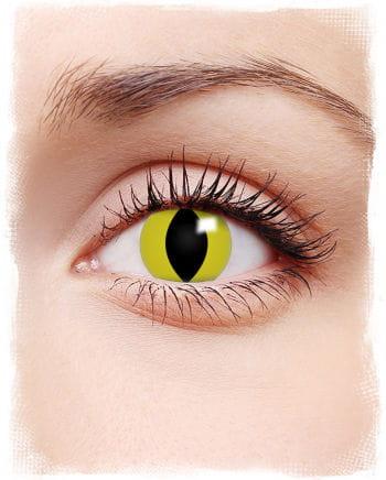 Contact lenses yellow cat eyes motif