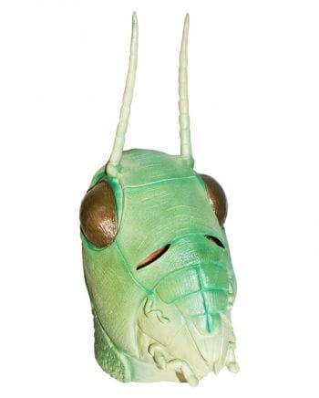 Grashüpfer Maske