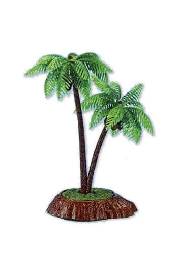 Hawaii Party palm