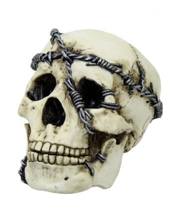 Skull with Barbed Wire
