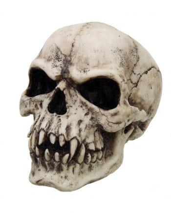 Vampire skull 17 cm