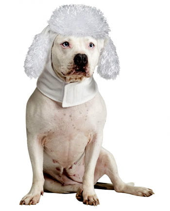 Hundemütze Pudel