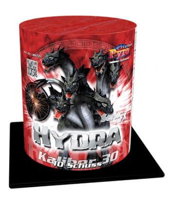 Hydra Batteriefeuerwerk 10 Schuss