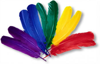 Indian Feathers 10 PCS