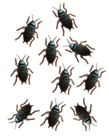 Cockroaches 10 Pack