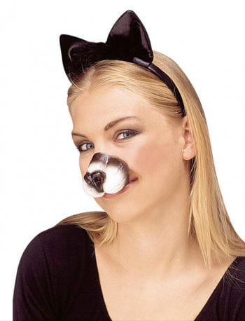 Katzen Nase