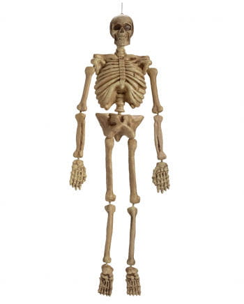 Plastic Skeleton 152cm