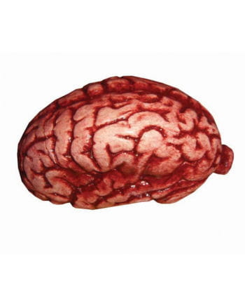 Latex Gehirn