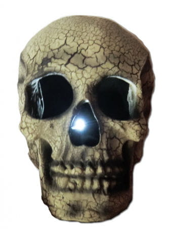 Light Up Skull Beige