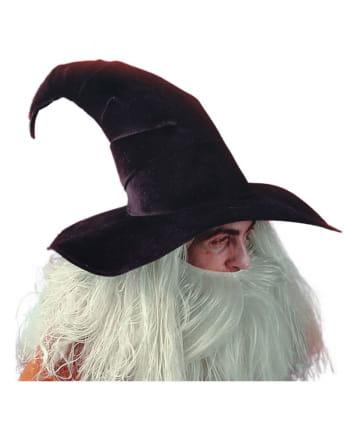 Magier Zauberer Hut