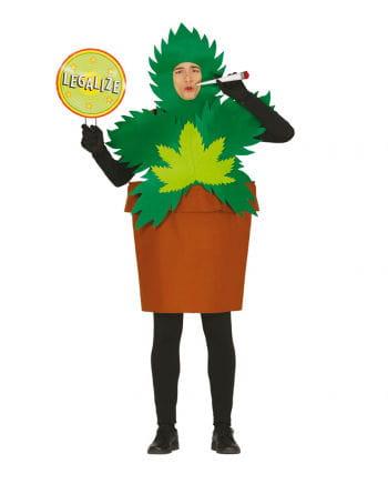 Hanfblatt Topfpflanze Kostüm