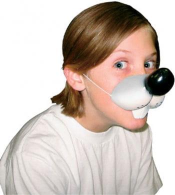 Hausmaus Nase