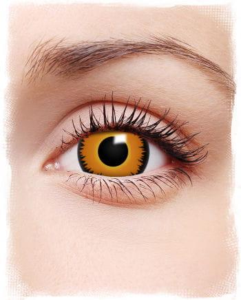 Mini-sclera contact lenses Orange Werewolf