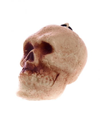 KleinerTotenschädel 10 cm