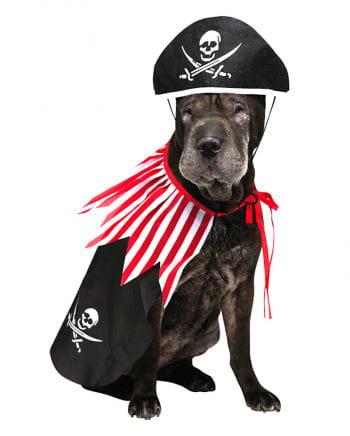 Piratenkostüm für Hunde