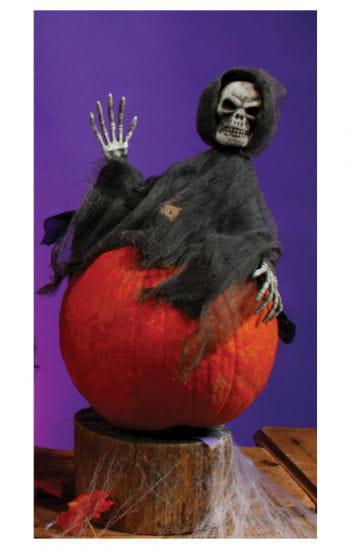 Pumpkin Hugger Gevatter Tod