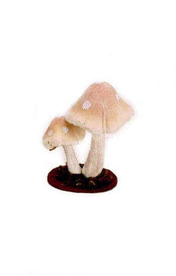 Realistic Forest Mushrooms
