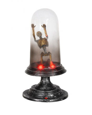 "Skeleton under ""bell jar"""