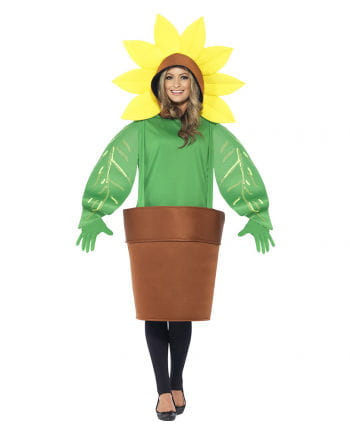 Sunflower in pot costume