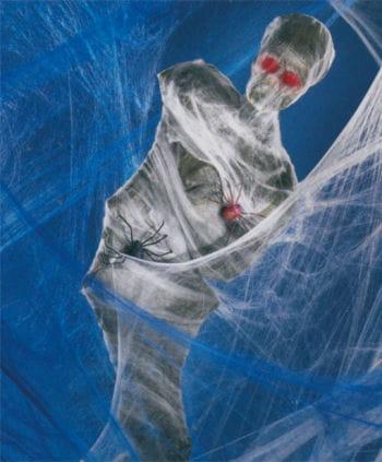 Spinnweben blau